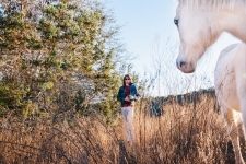 Christian bland high res color white horse-6398small
