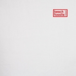 Beach fossils album