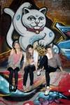 Baskery cat 4000